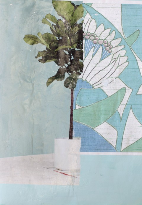 collage, blue, green, photography, mixed media, plant